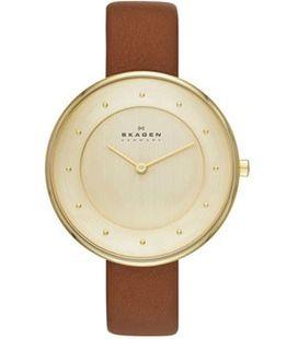 Часы Skagen SKW2138